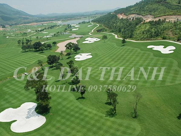 G&L Đại Thành - Nhận thi công sân golf đạt tiêu chuẩn quốc tế